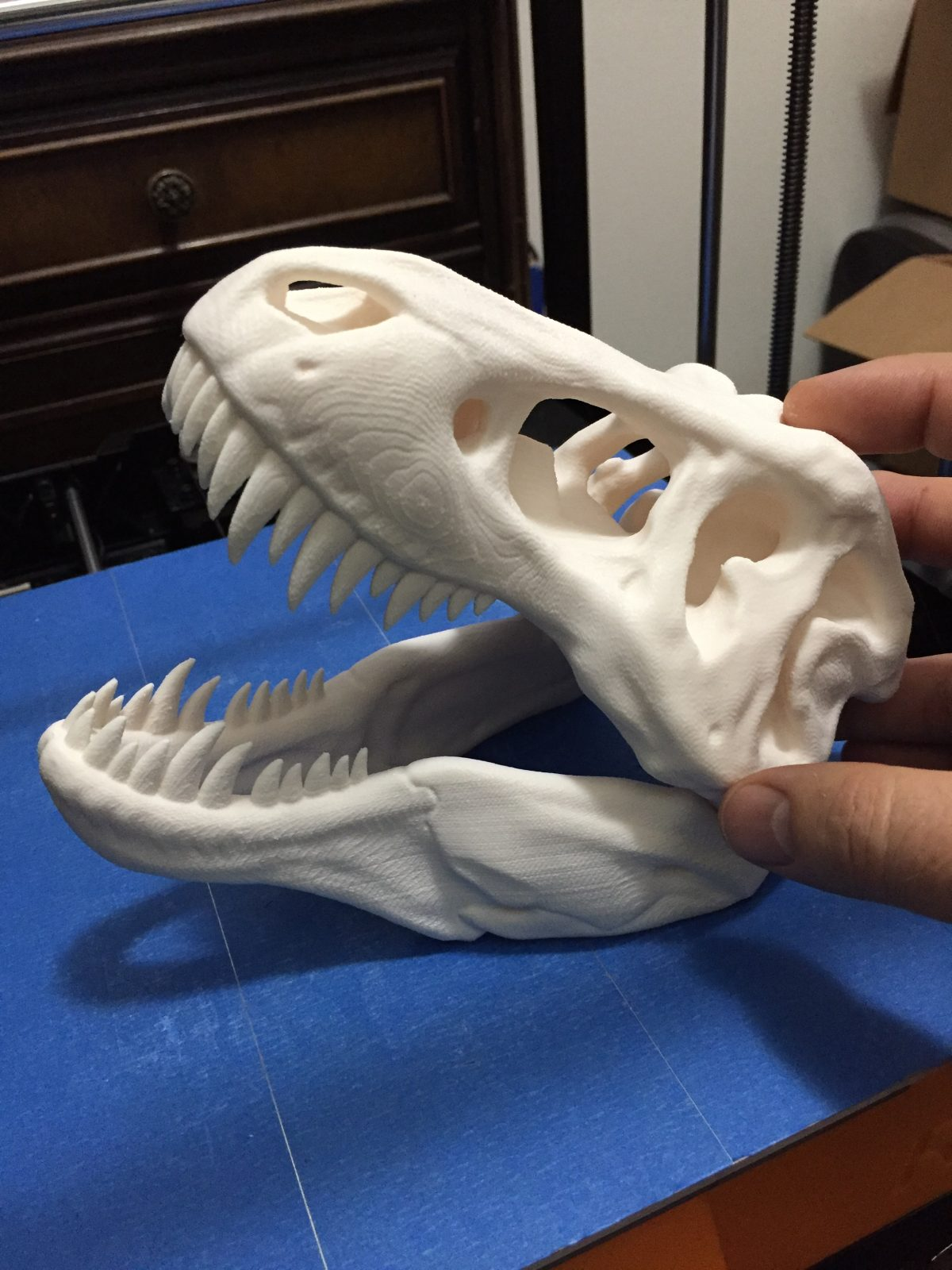 Finished skull huge dinosaur print ReliaBuild 3d